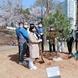 도시공원 내 천연기념물 정이품송 자목 식재
